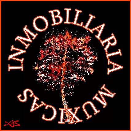 inmomuxicas2.jpg
