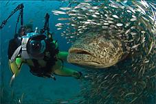 peixegrande.jpg